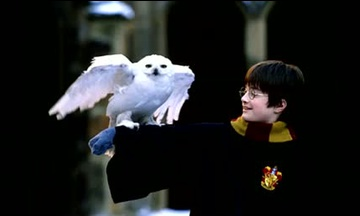 Harry Potter TOP 10 song