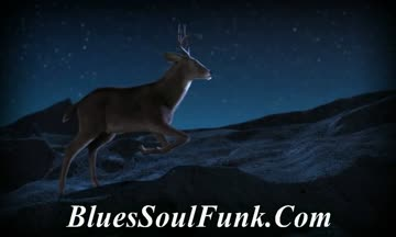 blues, blues music